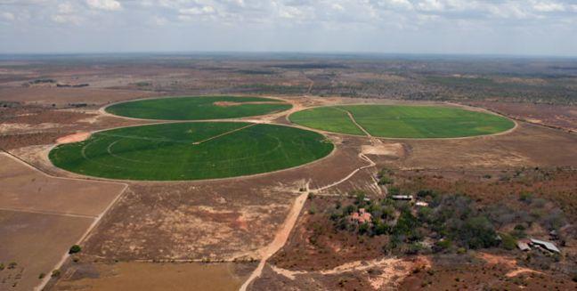 El Tigre, Venezuela - Projeto José Inácio de Abreu e Lima. Plantio de soja.