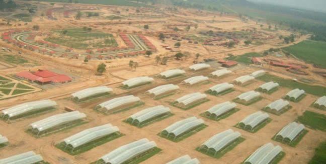 Zulia, Venezuela - Projeto Agro Socialista Planície de Maracaibo.