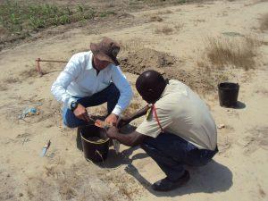 coleta d solo - catumbela - Angola