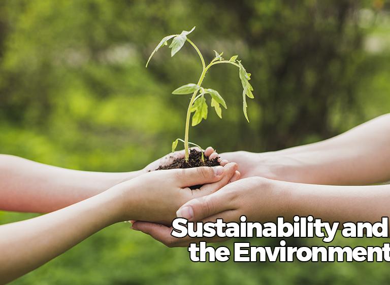sustentabilidade-e-meio-ambiente-en