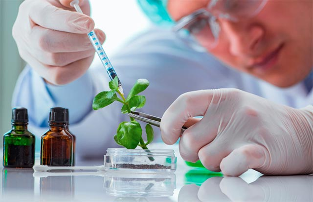 biotecnologia-vegetal