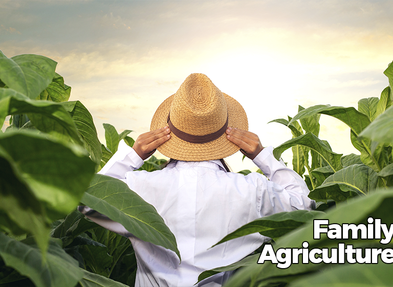agricultura-en