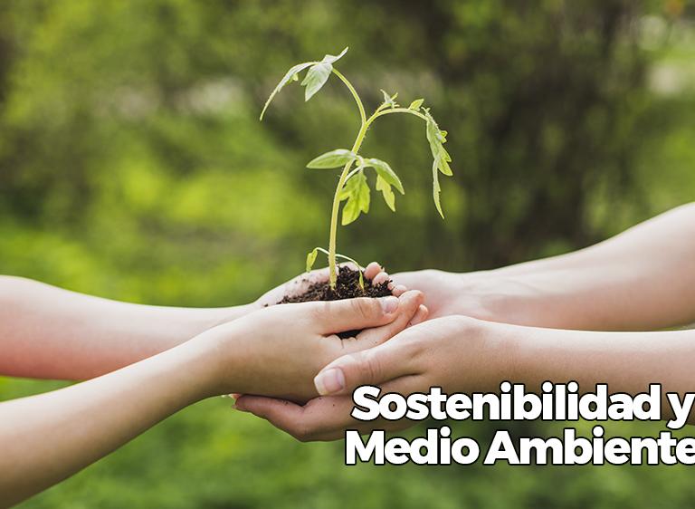 sustentabilidade-e-meio-ambiente-ess